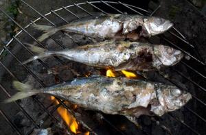 barbecued jackfish
