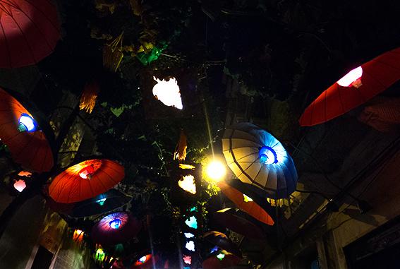 mixed umbrellas