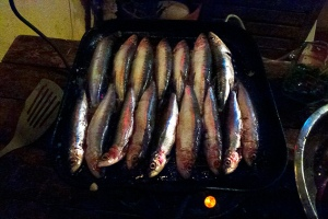 sardinas on the griddle