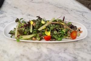 celeriac and scallop salad